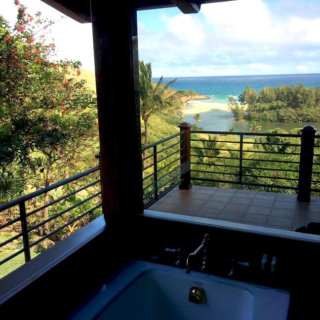 window cleaner hawaii
